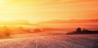 Jak selekcjonować preparaty rolnicze